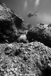 Flat Island Dive Mauritius 7metres balanced light by Jean-Yves Bignoux 